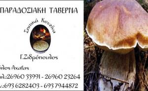 zidropoulos_logo